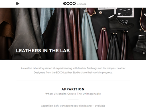 ECCO Leather