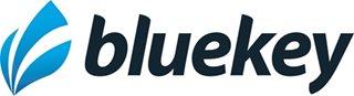BlueKey Web Solutions
