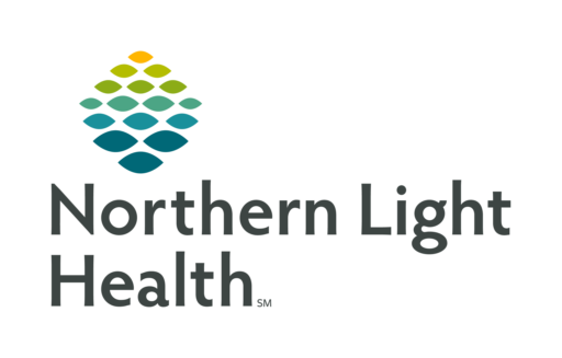 Northern Light Health Digital Services